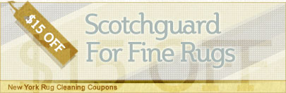 Cleaning Coupons | $15 off scotchguard for rugs | New York Rug Cleaning